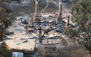 bush fire damage