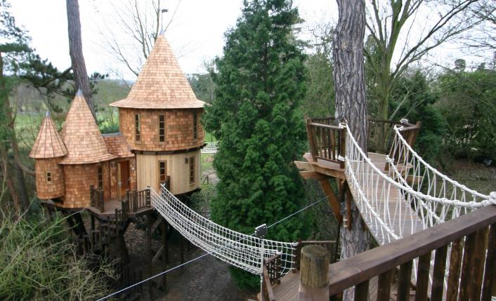 BlueForest_TreeHouse