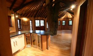 BlueForest_TreeHouse_kitchen